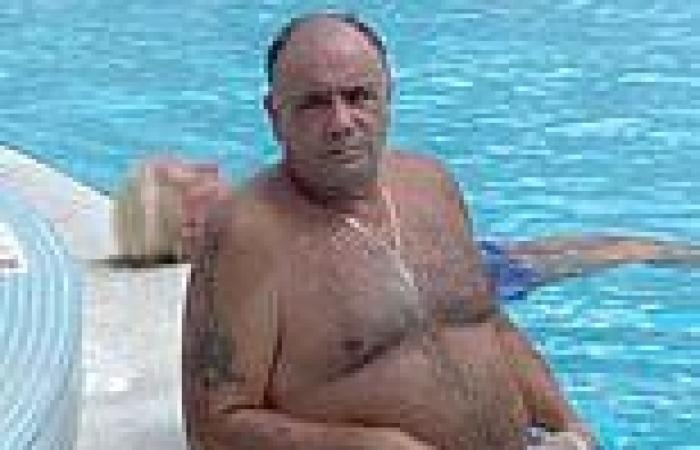 Fugitive Colombo consigliere surrenders to FBI