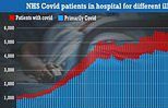 A QUARTER of NHS beds taken up by 'Covid patients' are being primarily treated ...