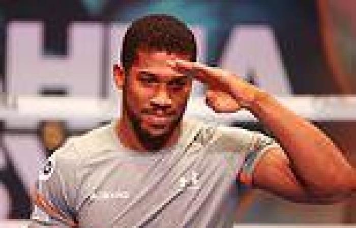 sport news Tyson Fury admits he wants Anthony Joshua to beat Oleksandr Usyk to keep £200m ...