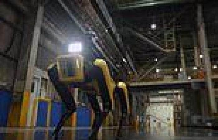 Robots: Hyundai is using Boston Dynamics' Spot to patrol its motor plants in ...