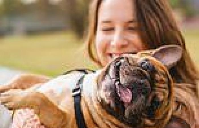 Employees could get two days' paid leave to grieve for dead pets under new laws ...