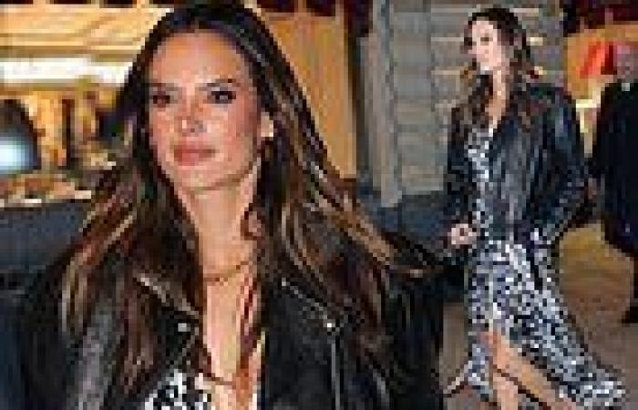 Alessandra Ambrosio glams up in leopard-print dress after environmental ...