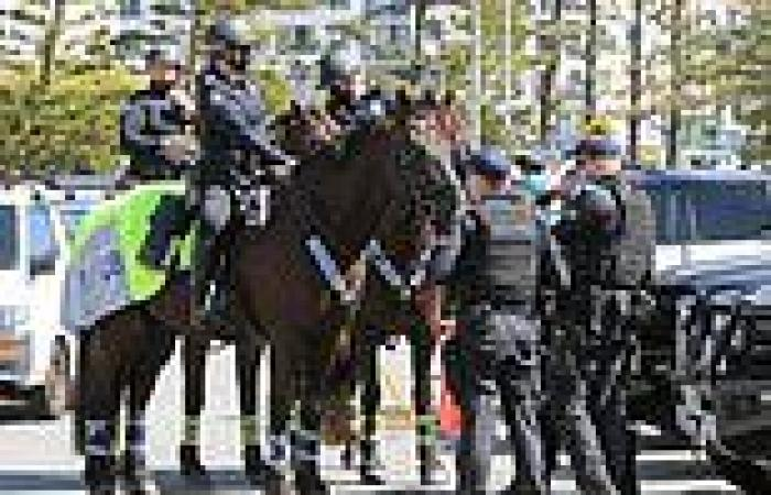 Why isolationist Queenslanders are planning to march the streets to KEEP the ...
