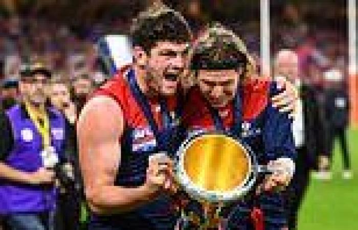 AFL grand final 2021: Melbourne Demons' win unites city in lockdown as Dan ...