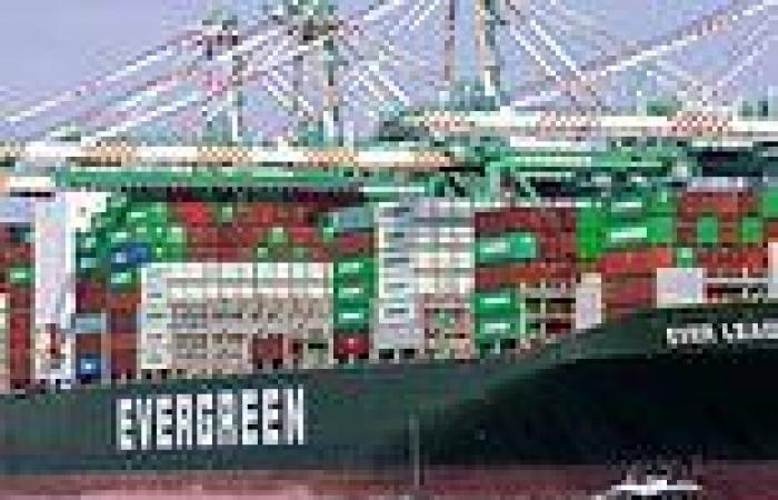 Cargo ships anchored off NY and LA face 4-WEEK wait to unload amid ...