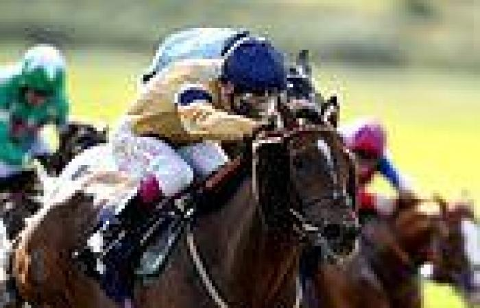 sport news Robin Goodfellow's Racing Tips: Best bets for Friday, October 8
