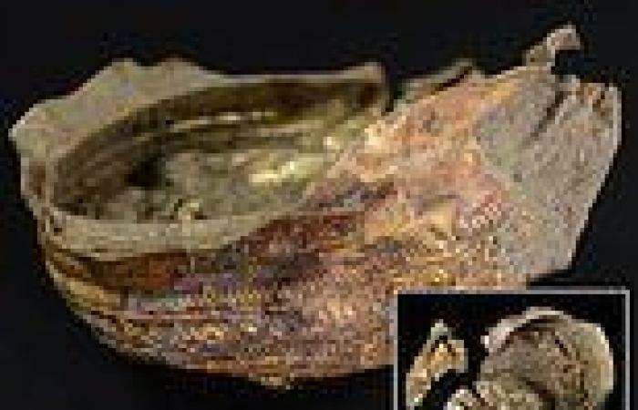 Golden sun bowl from 3,000 years ago sheds light on mysterious prehistoric ...