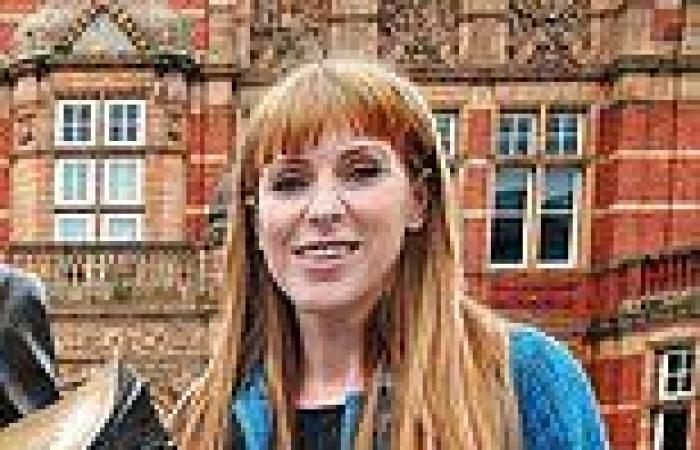 Labour's Angela Rayner puts the boot in - again!