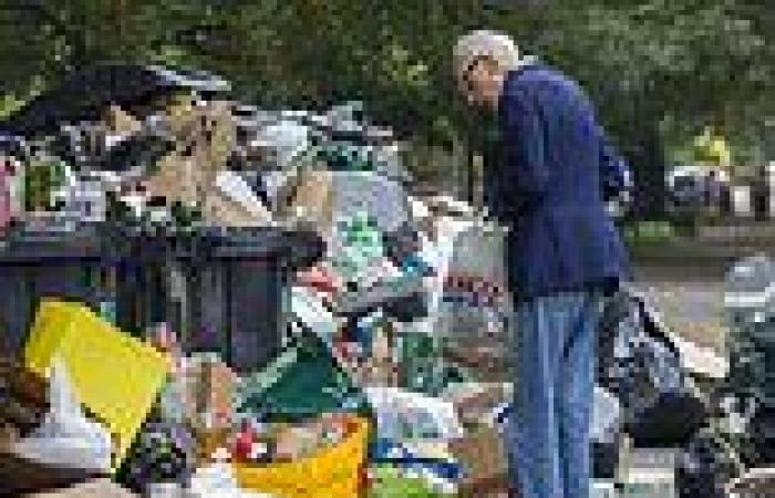 Brighton shock: Rubbish piles up in the streets and rats feast on scraps as ...