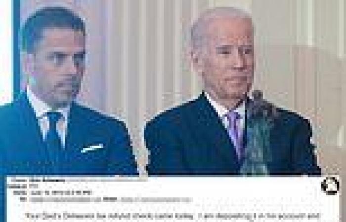 Joe Biden and Hunter's shared bank accounts could make president target of FBI ...