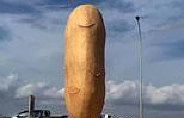 'Potato penis' statue erected to honour local area's elongated spuds sparks ...