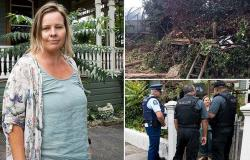 Landlord chops down six-year-old boy's treehouse as bitter 10-year-old dispute ...