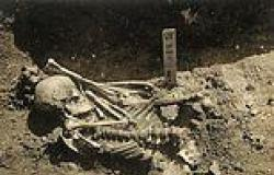 Japanese man was killed by a tiger or white shark 3,000 years