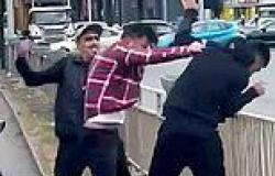 Video captures moment two thugs assault motorist in road rage incident in ...